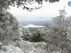 Perspectiva nevada