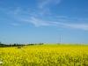 Abril en campos navarros
