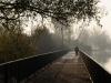 Un puente sobre el lago