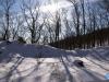 Sombras invernales