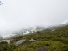 Caminata bajo la niebla III