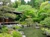 Jardín japonés I