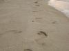 Siguiendo tu rastro en la arena